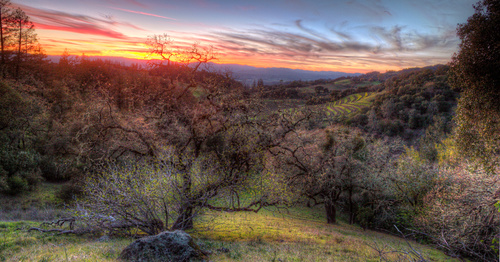 Read: Our 5 Favorite Healthy Hikes Near Santa Rosa
